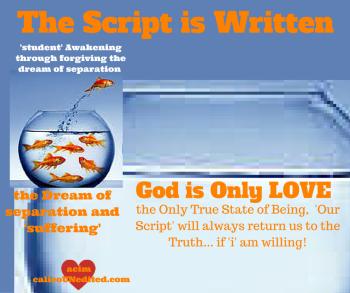 The Script is Written
